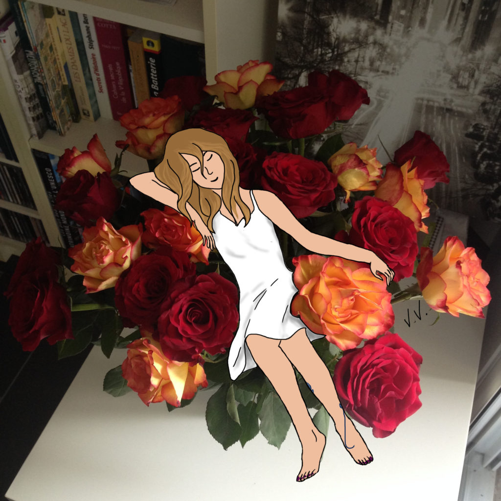 roses, dessin, illustration,